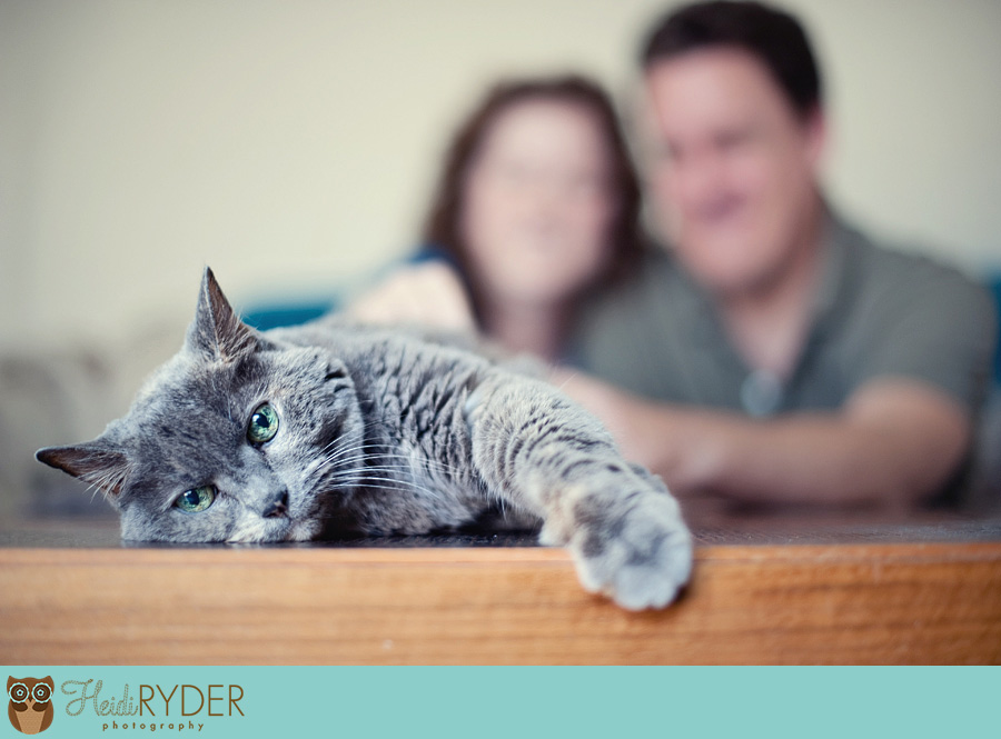 Los Angeles engagement photograhy with cat