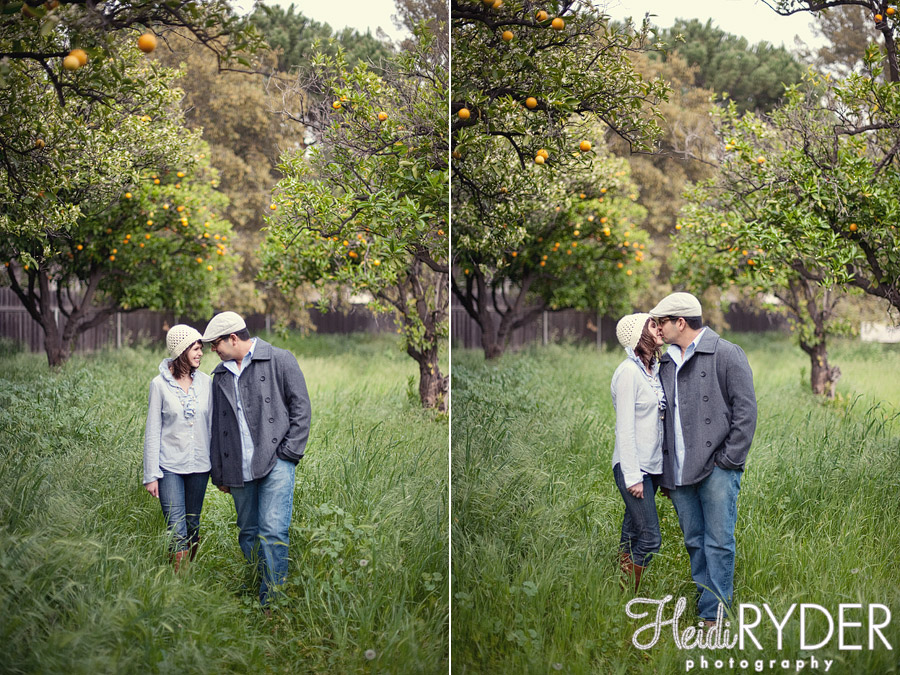 Los Angeles engagement photos in an orange grove