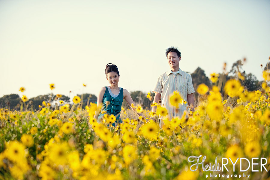 Crystal Cove State Park engagement photos