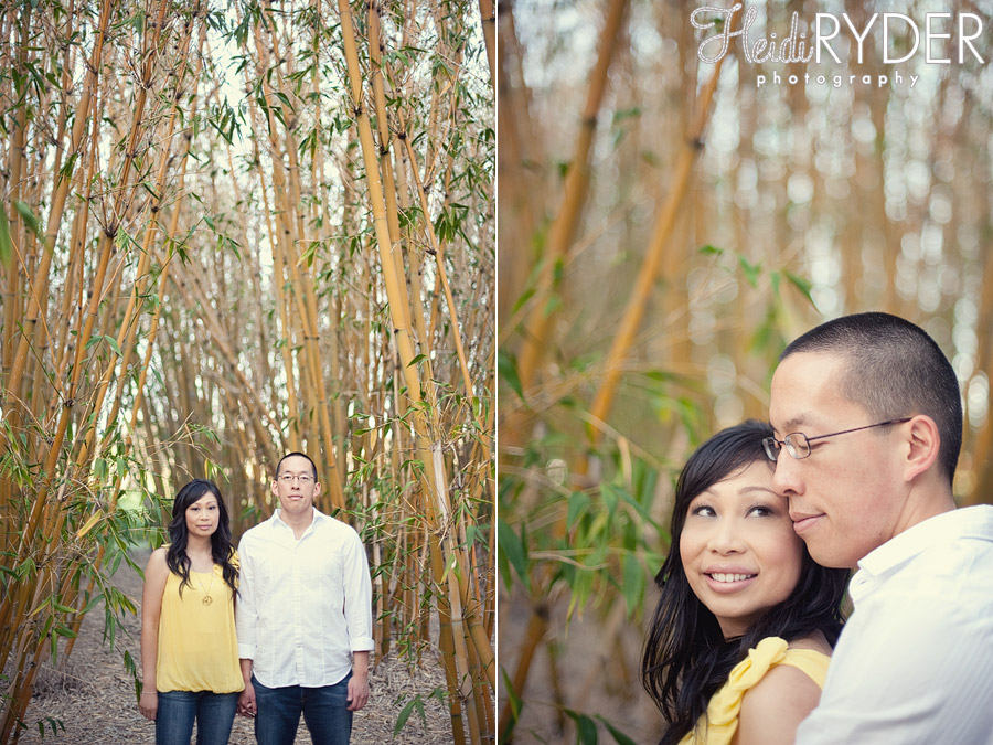 couple in the middle of a bamboo forest