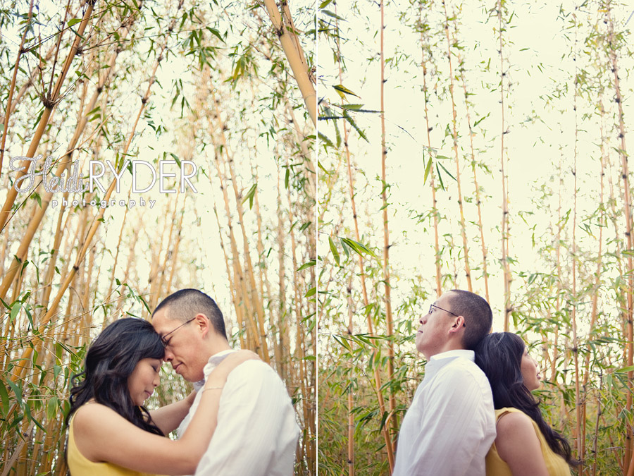 couple engaged in bamboo forest
