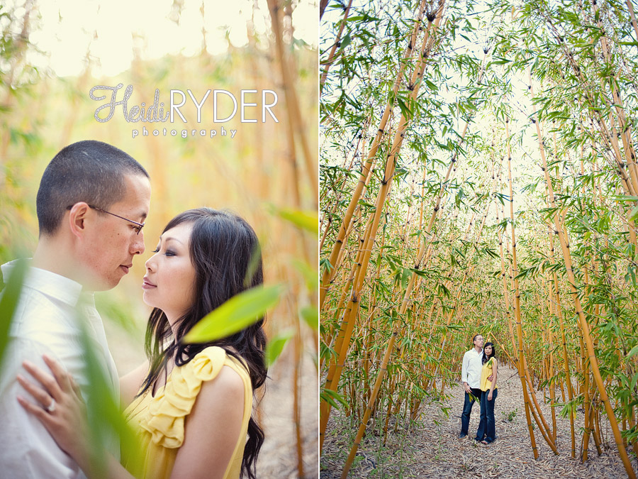 couple and large bamboo forest