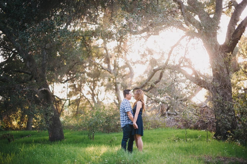 Riley Park engagement photo